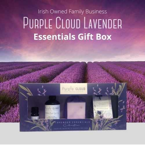 Lavender Essential Collection